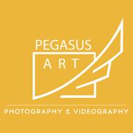PEGASUSART STUDIO